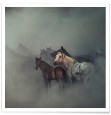 The Lost Horses - Hüseyin Taşkın Poster