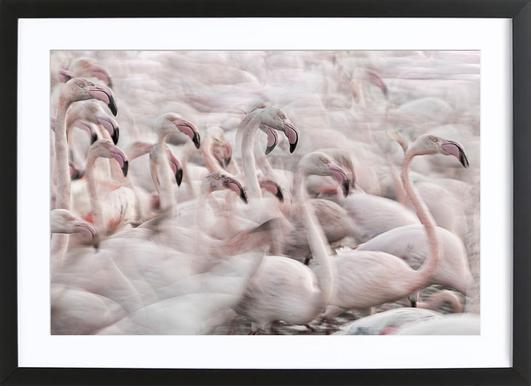 In The Pink Transhumance - Martine Benezech