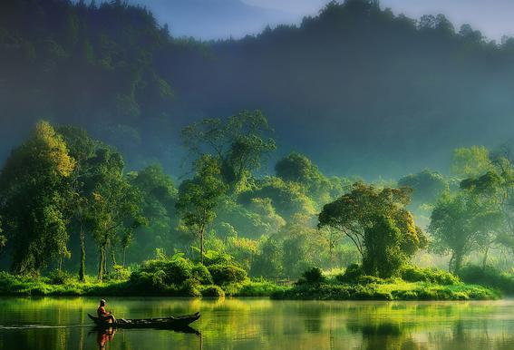 Painting of Nature - Hardibudi