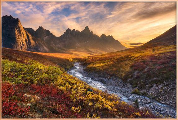 Mountain Paradise - Chris Moore