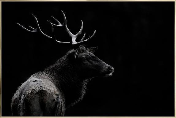 The Deer Soul - Massimo Mei -Poster im Alurahmen