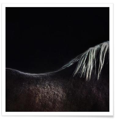 The Naked Horse - Piet Flour