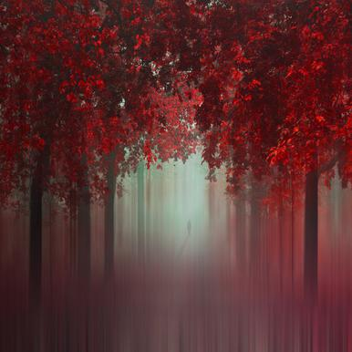 Out of Love - Ildiko Neer
