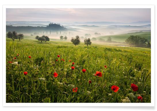 Tuscan Spring Poster