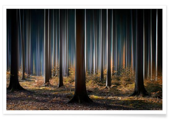 Mystic Wood -Poster