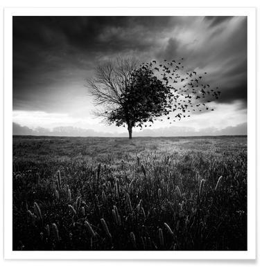 Illusion d'un printemps perdu poster