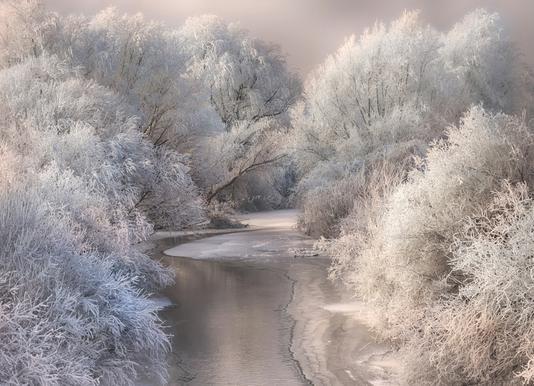 Winter Song canvas doek