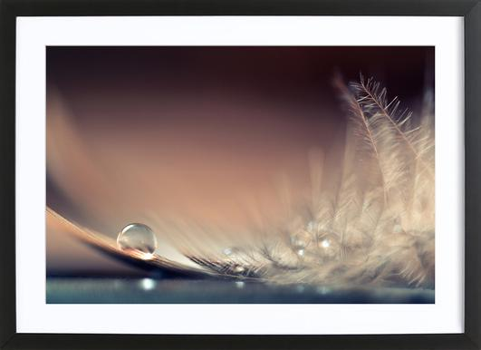 Stories of Drops Framed Print