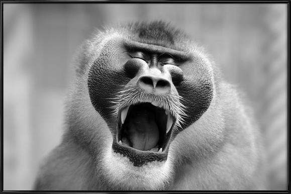 The Yawn I - Antje Wenner - Braun