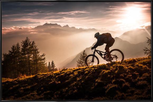 Golden Hour Biking ingelijste poster