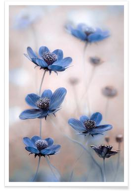Cosmos blue Poster