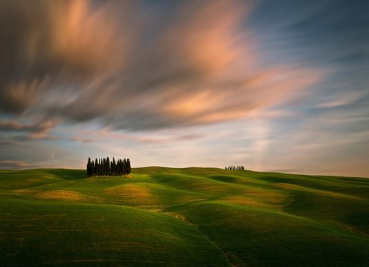 Fields... - Krzysztof Browko