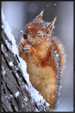 Winter - ervinkobakçi -Bild mit Kunststoffrahmen