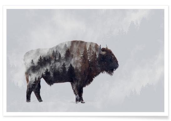 Bison - Double Exposure - AngyalosiBeáta Poster