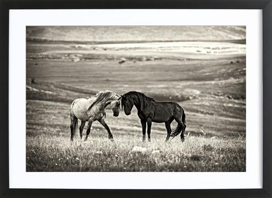 Close Encounter - Vedran Vidak Framed Print