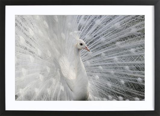 As White As Snow - VictoriaI Vanova affiche sous cadre en bois