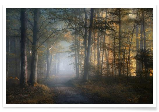 Autumn Symphony - Norbert Maier poster
