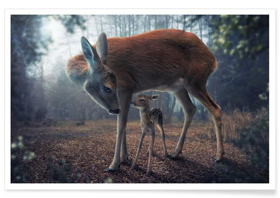 Mother and Fawn - John Wilhelm affiche