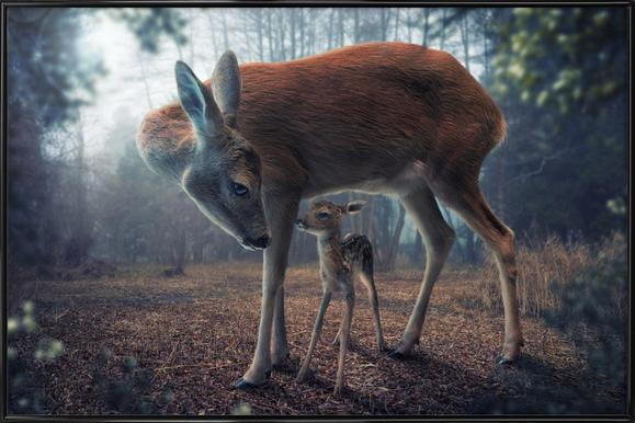 Mother and Fawn - John Wilhelm Framed Poster