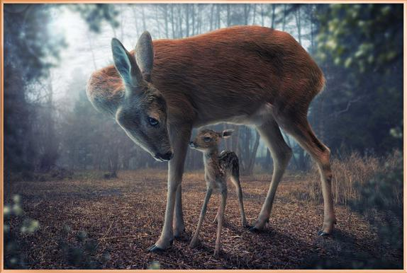 Mother and Fawn - John Wilhelm poster in aluminium lijst
