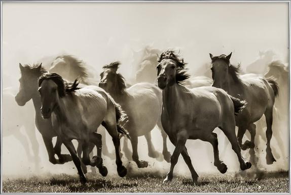 Horse - Heidi Bartsch affiche sous cadre en aluminium