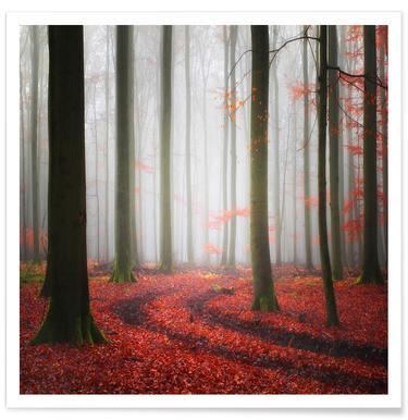 Autumnal Tracks - Carsten Meyerdierks Poster