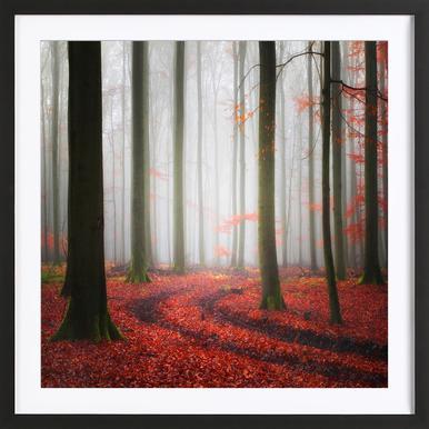 Autumnal Tracks - Carsten Meyerdierks Framed Print