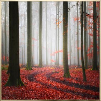 Autumnal Tracks - Carsten Meyerdierks affiche sous cadre en aluminium