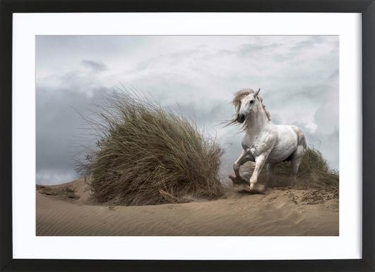 White Stallion on the Beach - LucieBressy Framed Print