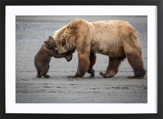 A Little Bear Hug - Renee Doyle Framed Print