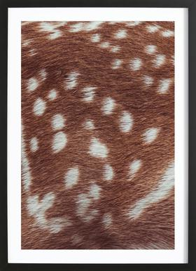 Deer Skin Framed Print