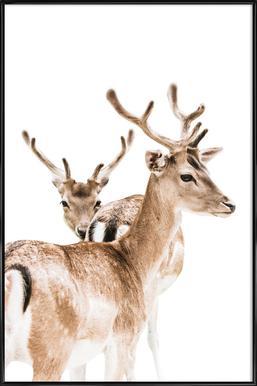Deers II Framed Poster