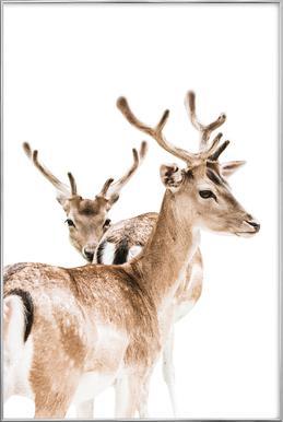Deers II Poster in Aluminium Frame