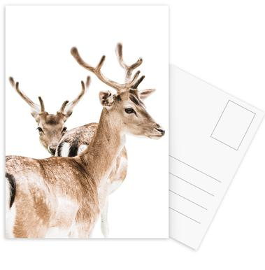 Deers II Postcard Set