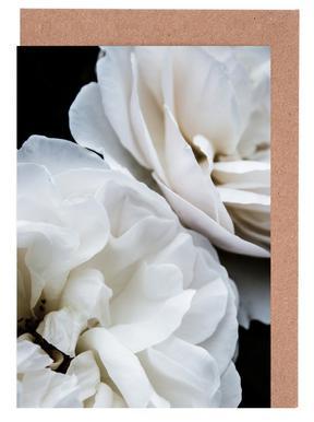 White Roses Greeting Card Set