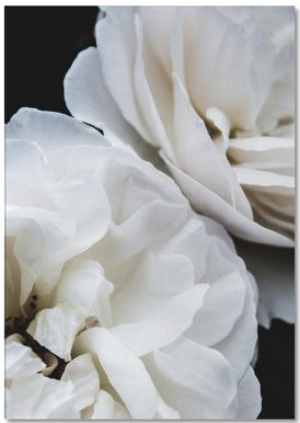 White Roses Notepad