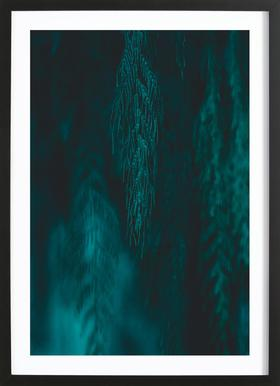 Willow III Framed Print