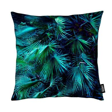 Amoung the Palm Leaves