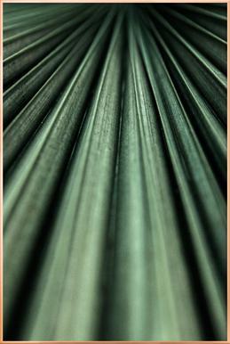 Green Palm Poster in Aluminium Frame