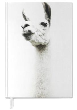 Llama I