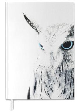 Owl II agenda