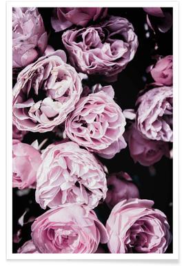 Pink Flowers III -Poster
