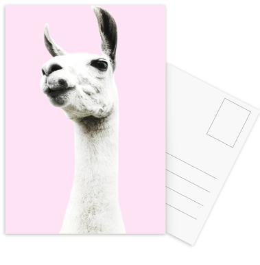 Pink Llama -Postkartenset