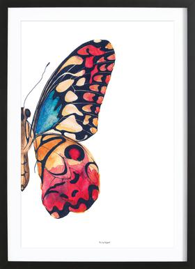 Butterfly Right Framed Print