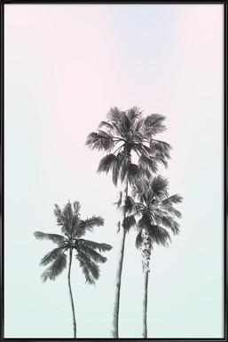 Three Palms Framed Poster