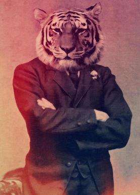 Old Timey Tiger Canvas Print