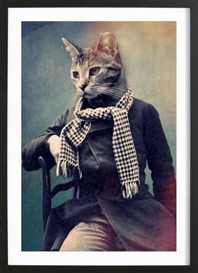 Cat in Scarf Framed Print