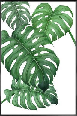 Tropical No.2 affiche encadrée