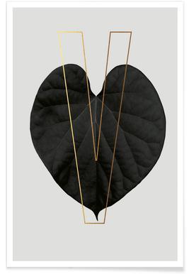 Plants V -Poster