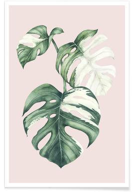 Tropical No. 4 affiche